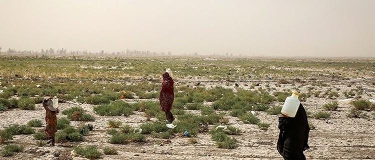 جنگهای نیابتی خاورمیانه را تمام کنید/ گزارشی از فارین پالیسی 750625 557 750x321